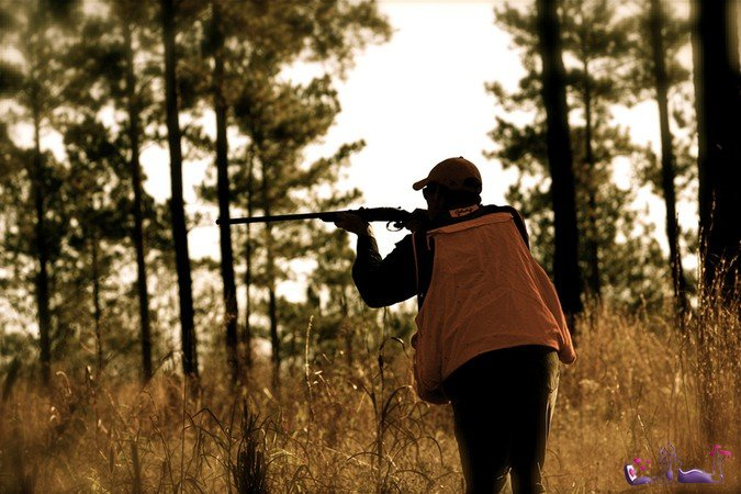 Ученые предсказали скорую легализацию охоты на людей